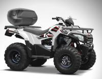 Aeon 200cc or 230cc